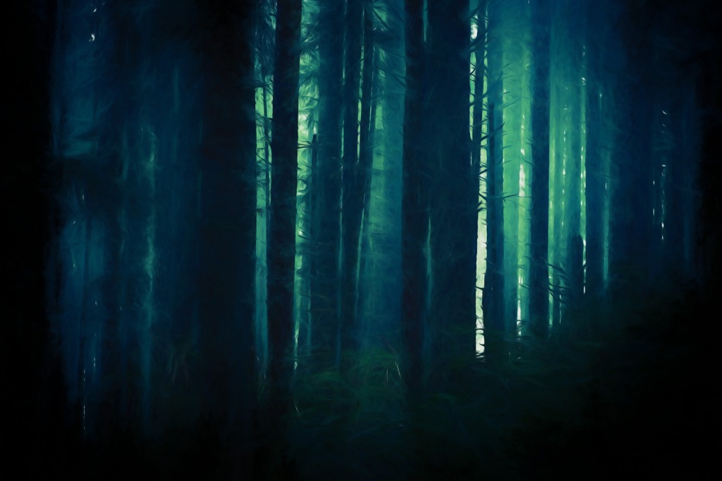 Dark Foggy and Creepy Forest in Dark Blue Color Grading. Forest Backdrop.